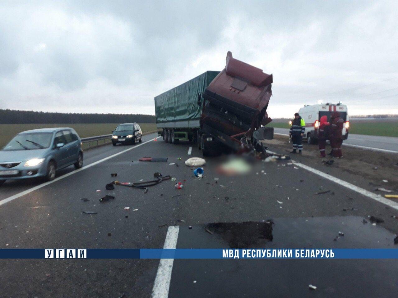 В Брестской области на трассе М1 столкнулись две фуры. Погиб один из водителей