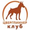 ЦВЕРГПИНЧЕР КЛУБ