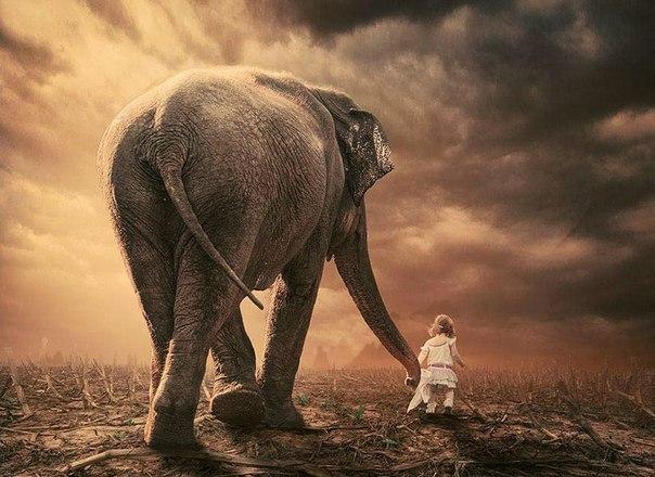 «Избегайте тех, кто пытается подорвать вашу веру в себя. Эта черта свойственна мелким людям. Великий человек, наоборот, внушает вам чувство, что и вы можете стать великим».