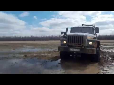 В одном болоте. Как застряли КАМАЗ, АМКАДОР, УРАЛ, Land Cruiser и Hilux Surf