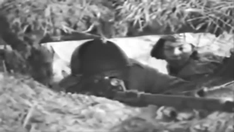 Снайпер девочка которая убивала фашистов глядя им в лицо Молдагулова Алия Нурмухамедовна