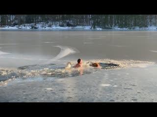 45-летний американец спас провалившихся под лёд собак