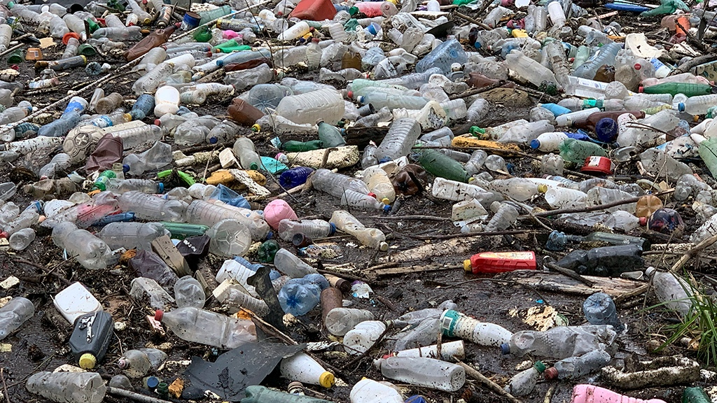 Чистота требует средств: в России предложили вновь поднять тарифы на мусор
