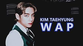 KIM TAEHYUNG ● WAP [FMV]