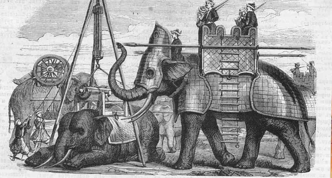 Слоны в армии Индии