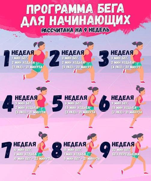 Подробный План Для Похудения.